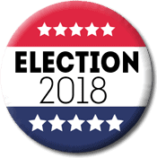2018 Midterm Elections button
