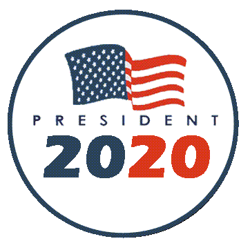 2020-election button