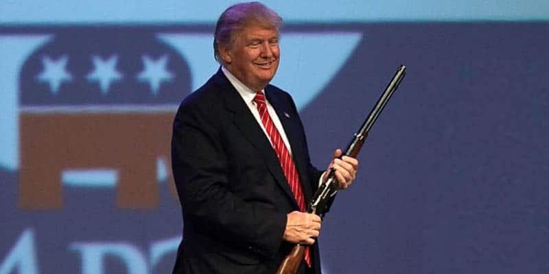 trump gun control