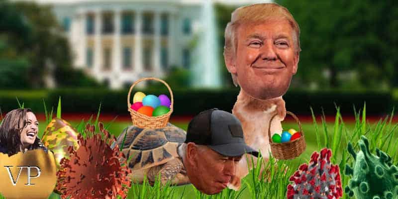 Trump vs Biden odds of winning 2020 US Presidential Election Odds Easter, Kamala as Democrat VP pick