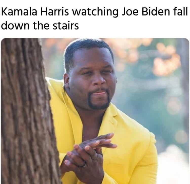 Biden Harris meme