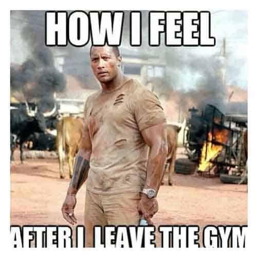 the Rock gym meme